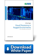 Visual Processing in Rugged Environments
