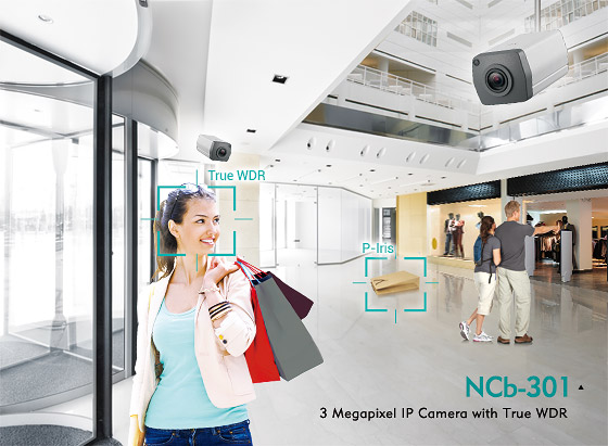 3 Megapixel IP Cameras Are Perfect for Retail and Building Surveillance